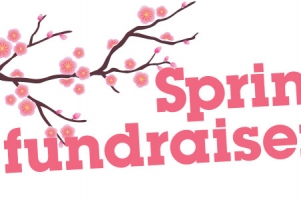 Peer to Peer fundraising ideas for Spring
